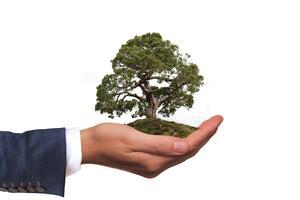 5 Юни - Международен ден за опазване на околната среда